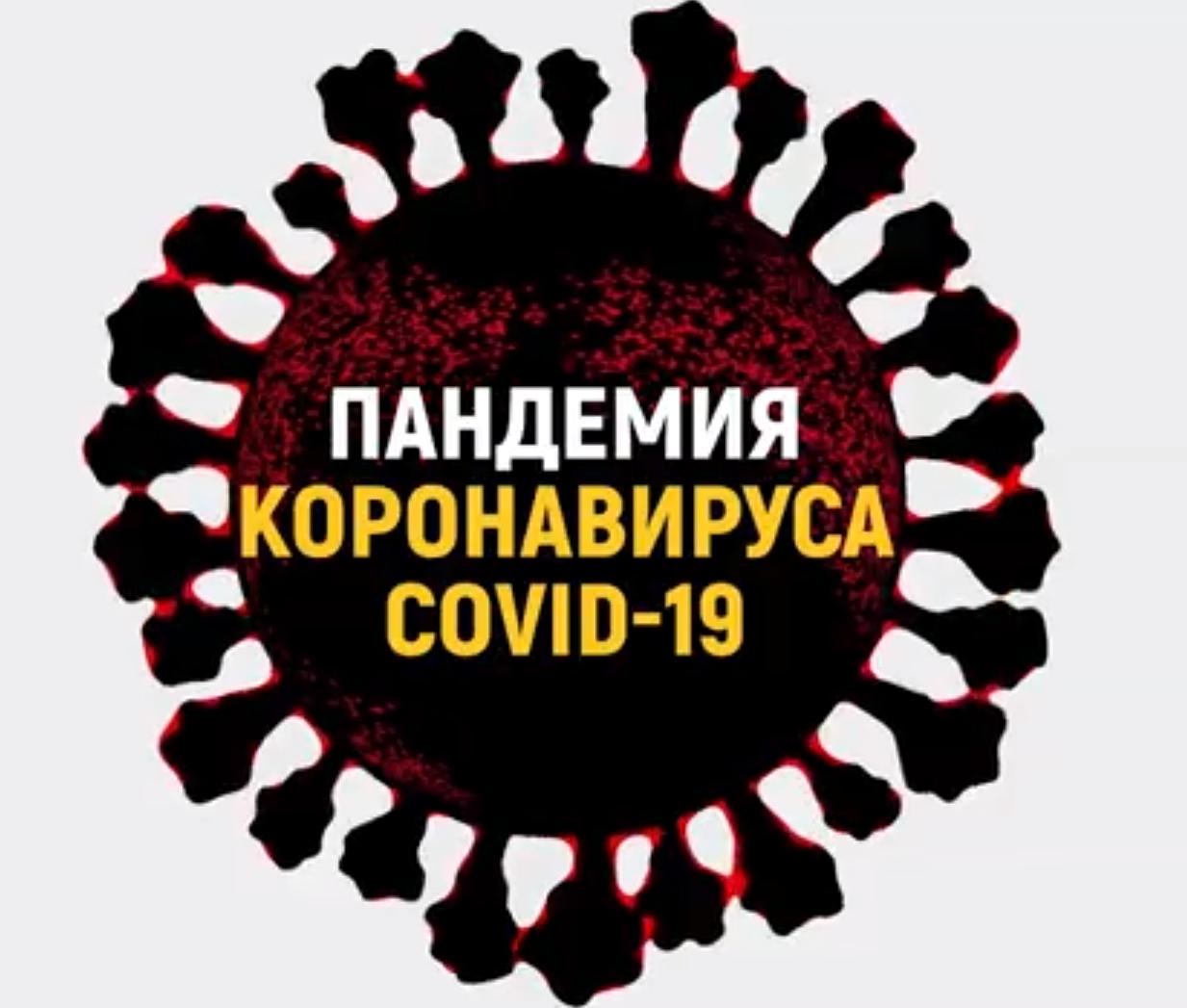 Пандемия КОВИД-19